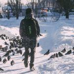 Синоптики дали прогноз на первую неделю декабря в Алтайском крае