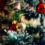 Эксперты выяснили, сколько барнаульцам придется заплатить за новогоднюю елку