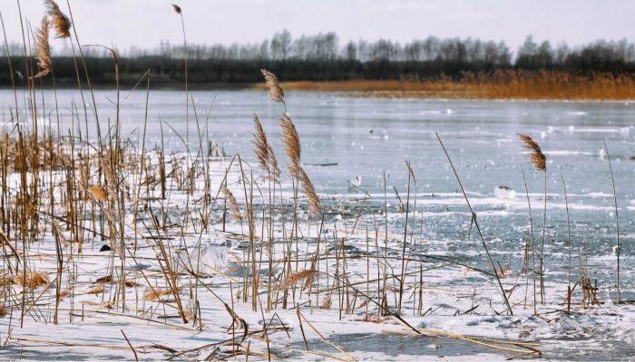 Иномарку подняли со дна замерзшего озера в Алтайском крае