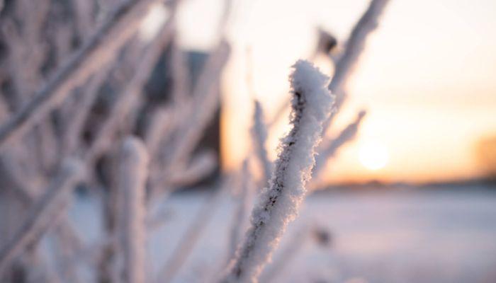 Морозы до -42 градусов опустятся в декабре на Алтайский край