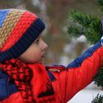 На Алтае отменили все праздники и корпоративы с 15 декабря