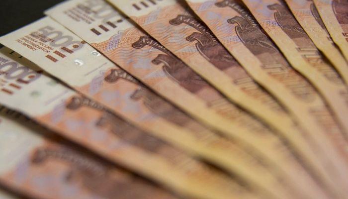 Куда два отстающих Алтая потратили индивидуальные субсидии на развитие