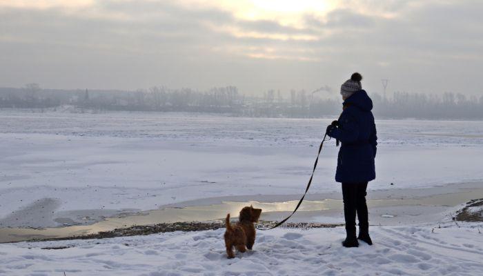 Теплая и снежная погода будет в выходные в Алтайском крае
