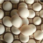 Рост цен на продукты: что ждет жителей Алтайского края в 2021 году