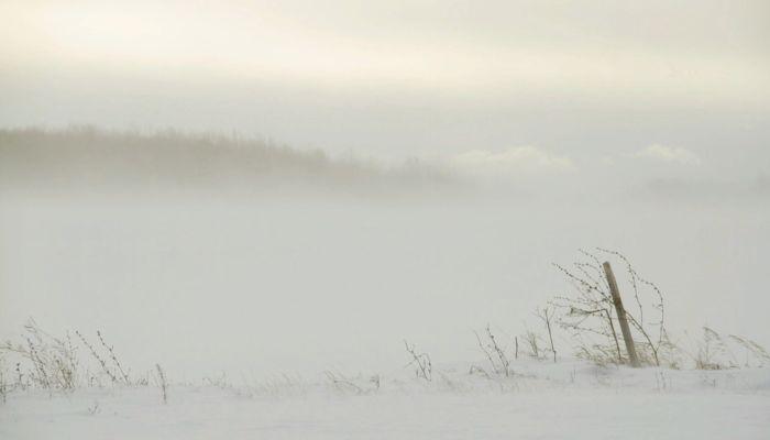 Гидрометцентр: Алтайский край накроет угрожающий ветер
