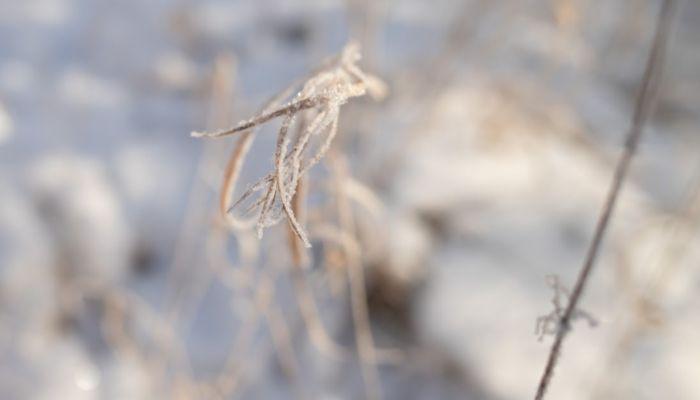 Три дома и детсад остались без отопления в Барнауле накануне морозов