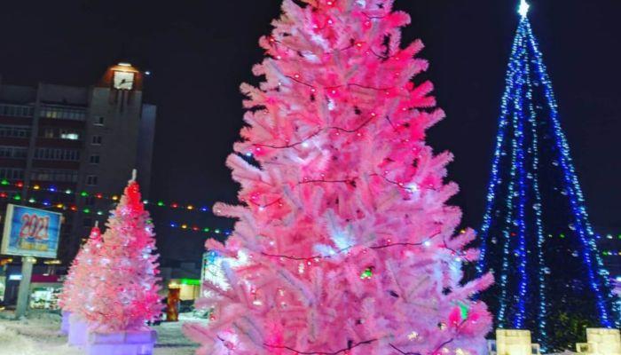 С черной икрой под фейерверки: как жители Алтайского края встретили Новый год