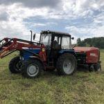 Ферму для разведения маралов продают в Алтайском крае за 55 млн рублей