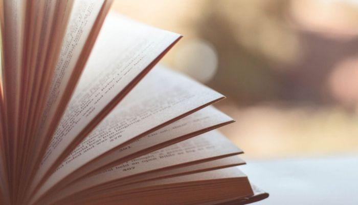 Мелодрамы не в чести: алтайская Шишковка назвала топ самых популярных книг