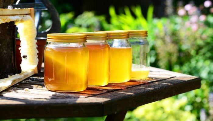 Диетолог рассказал, кому не стоит употреблять мед