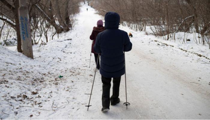 Парк Юбилейный в Барнауле восстановят на президентский грант