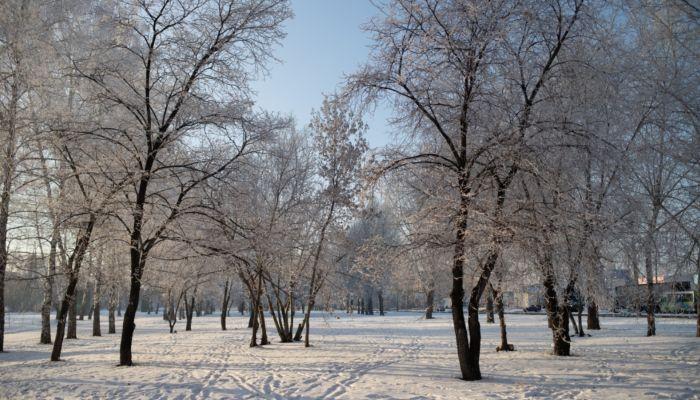 Крещенский мороз до -18 градусов ожидается в Алтайском крае