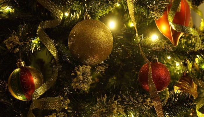 Большинство жителей Сибири провели новогодние каникулы дома