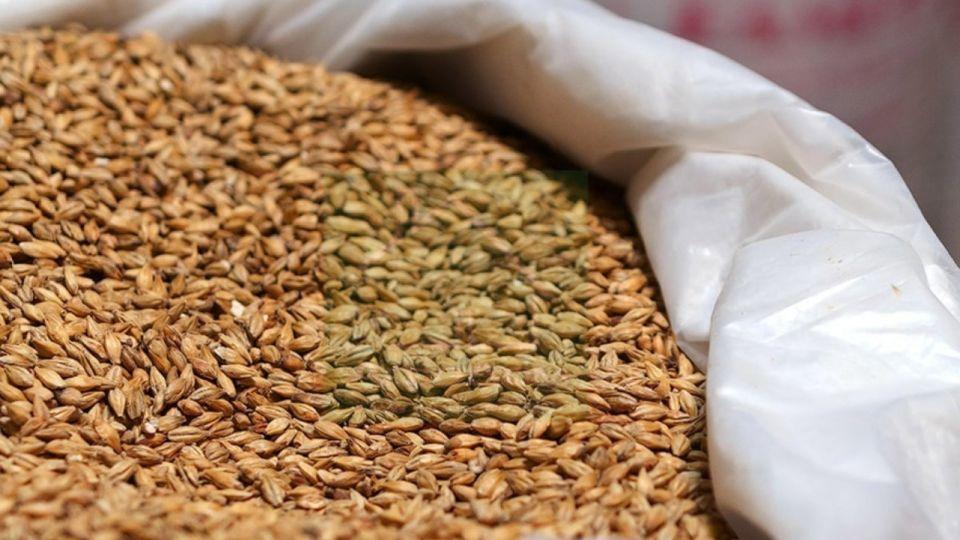 Алтайский край не может отправить зерно в Китай из-за новой упаковки