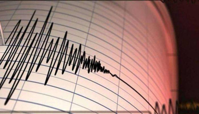 В Новосибирской области зафиксировали два землетрясения