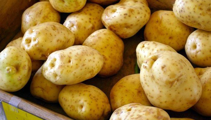 Россиян предложили кормить картошкой экономкласса