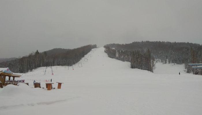 На Мишиной горе в Белокурихе появится искусственное оснежение за20 млн рублей