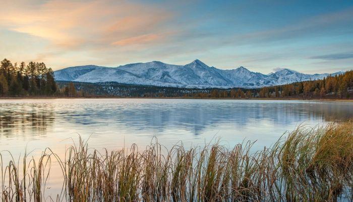 На территории двух Алтаев появятся первые глэмпинги в 2021 году