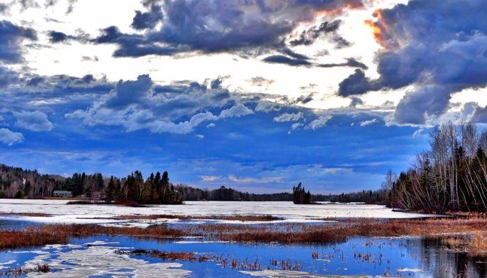 До +3 градусов потеплеет в Алтайском крае в выходные