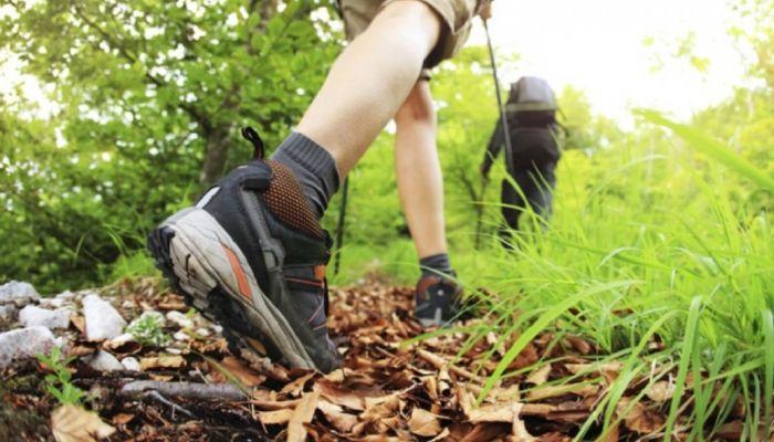 Подросток из Барнаула нашел труп в лесополосе и обчистил его