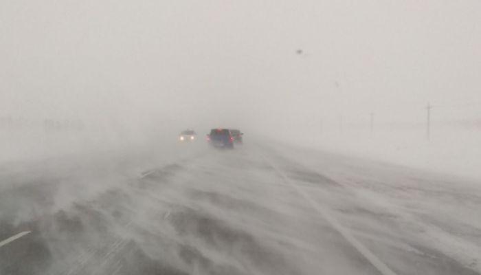 Телефон из рук вырывает: сильная метель разгулялась на трассах в Алтайском крае