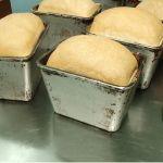 Алтайские ученые разработали хлеб по альтернативному рецепту