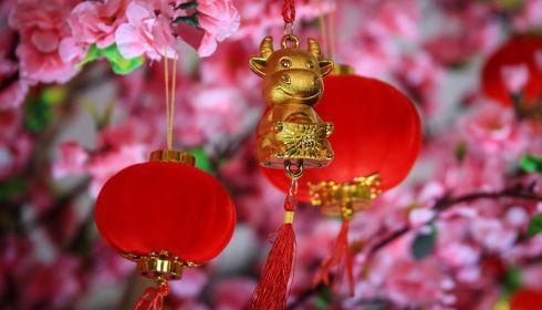Какого числа в 2021 году будут праздновать китайский Новый год и как он пройдет