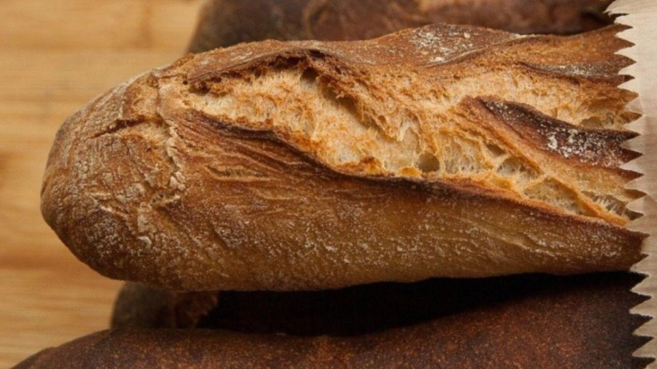 Алтайские власти решили компенсировать часть затрат производителей хлеба