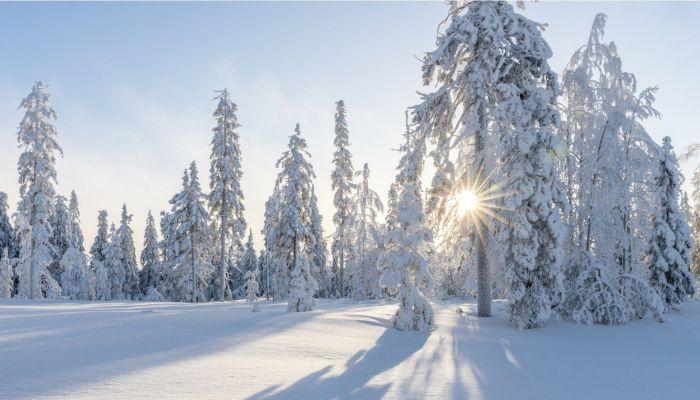 В Алтайском крае в выходные столбики термометров опустятся до -30