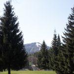 Республика Алтай хочет ввести для туристов экологический сбор