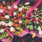 Как отдыхаем в Международный женский день: график выходных на 8 марта