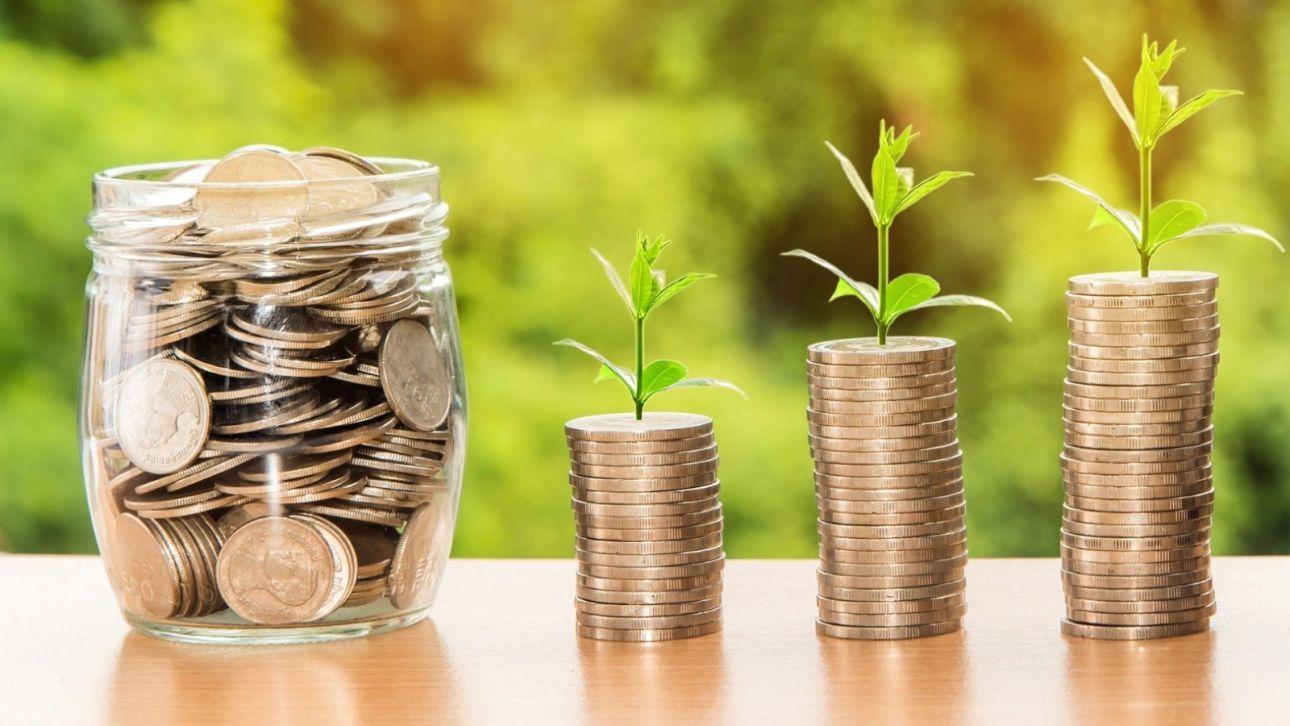 Банк ВТБ нарастил кредитный портфель по программе Минсельхоза в Алтайском крае