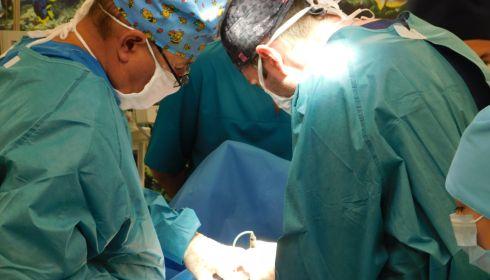 Алтайские хирурги спасли пациентку с гигантской опухолью