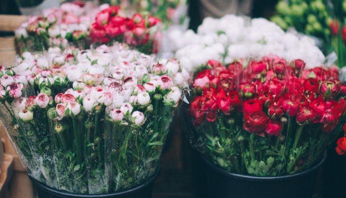 Такого ещё не было: рекордное подорожание цветов ожидается к 8 Марта