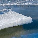 Двое братьев провалились под хрупкий лёд Волги и утонули