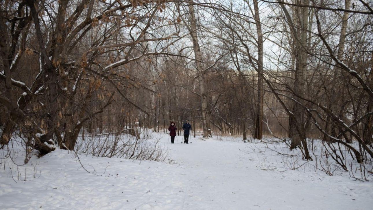 """Барнаульские общественники всерьез взялись за заброшенный парк """"Юбилейный"""""""