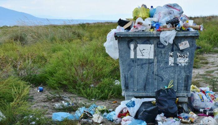 Названы регионы с самыми высокими тарифами на вывоз мусора