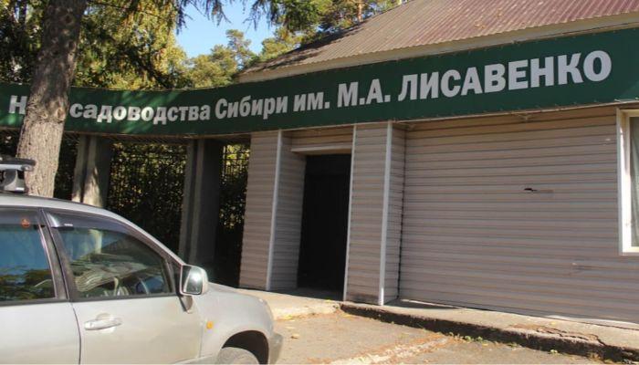 Экс-директор института Лисавенко получил срок за продажу саженцев на 3,8 млн