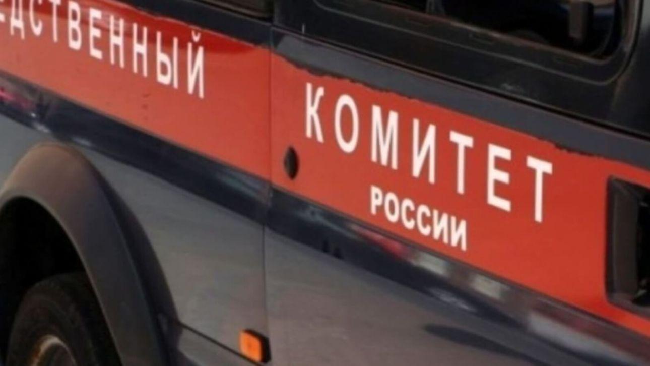 Следователи начали проверку нападения собаки на школьника в Бийске