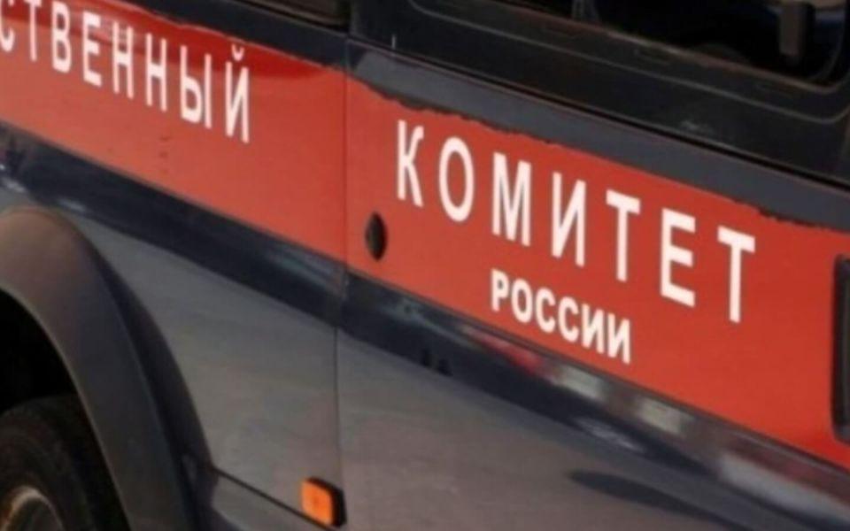 Следователи проверят все факты нападения собак на людей в Рубцовске