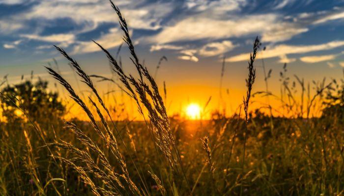 Эксперты: Россию ожидает аномально долгое лето