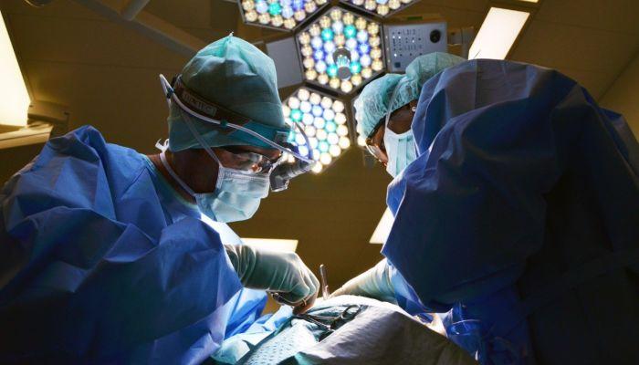 Когда отмечают Всемирный день почки и почему врачи считают этот праздник важным