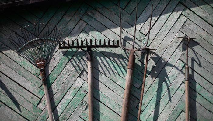 Мэрия Барнаула готовит весеннюю распродажу дачных участков