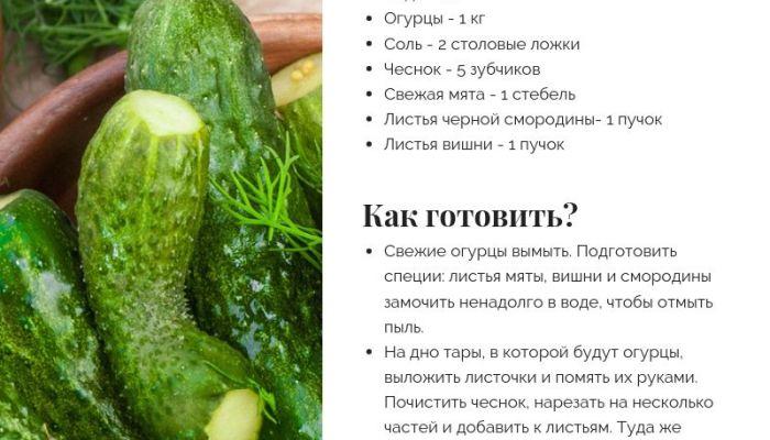 Похрустим: готовим вкусные малосольные огурцы с Толком