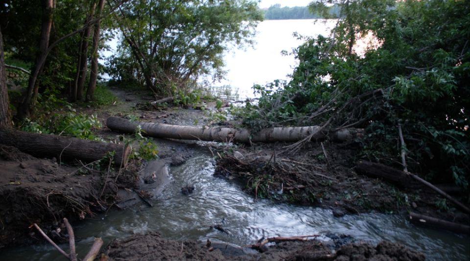 Пугающий вид: непонятная черная масса стекает в реку Бию