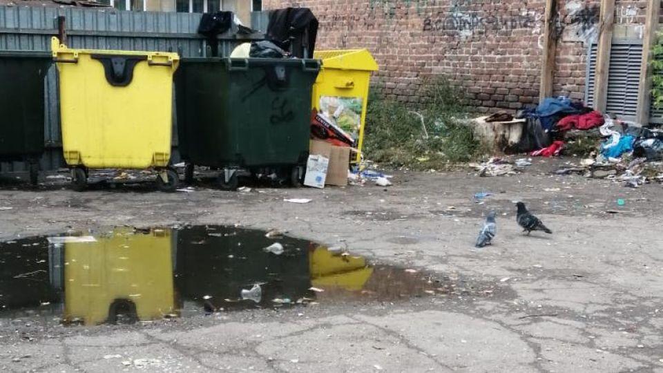 """""""Сдаем мусор собакам"""". Жители алтайских сел жалуются на вывоз отходов"""