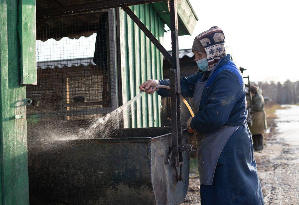 Пока в Дании забивают ковидных норок, на Алтае работает огромная соболиная ферма