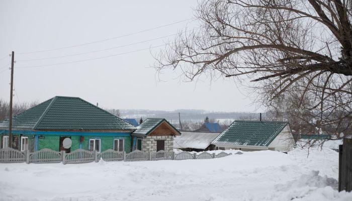 В Алтайском крае появился первый муниципальный округ без сельсоветов