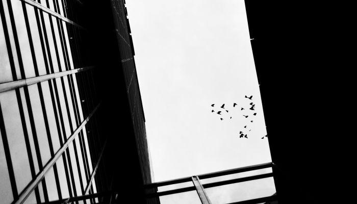 Дал слово пацана: школьник из Чувашии выпал с 23 этажа