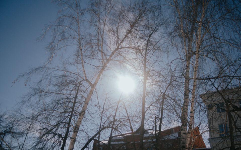 Мокрый снег с дождем и до 11 градусов ожидается 23 марта на Алтае
